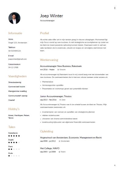 Accountmanager cv 2